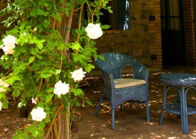 patio 4