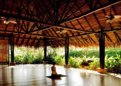 yoga open shala