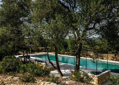 piscine et arbres